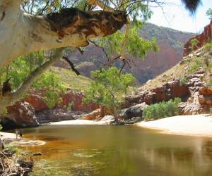 Alice Springs: Kiedy jechać