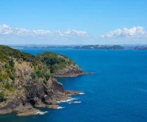 Whangarei: Kiedy jechać