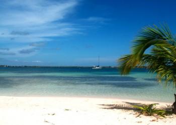 Wyspa Bahía