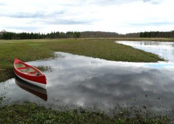 Park Narodowy Soomaa